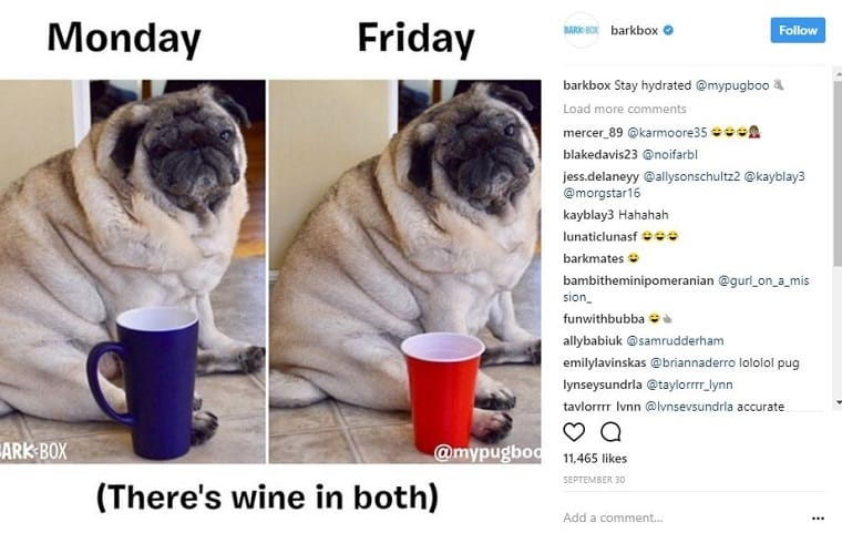 Memes in Marketing Barkbox