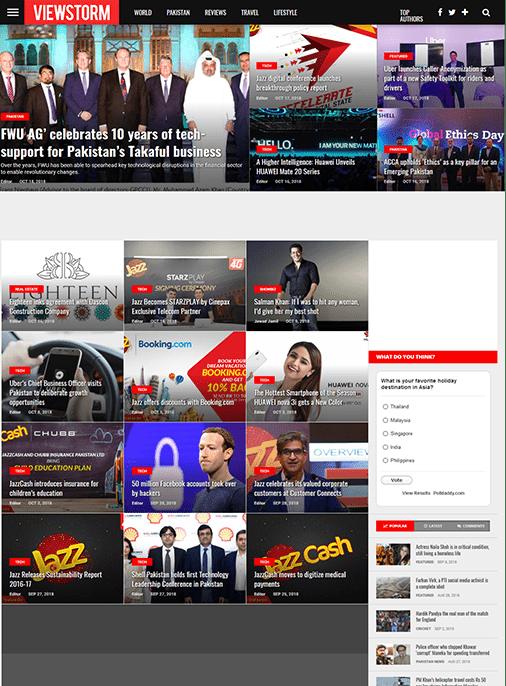 ViewStorm 1 - Website Design